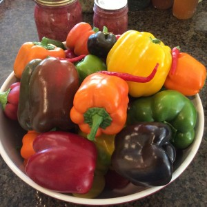 parable of the pepper